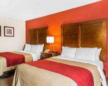 Comfort Inn Boston Hotel In Ma - Room Deals