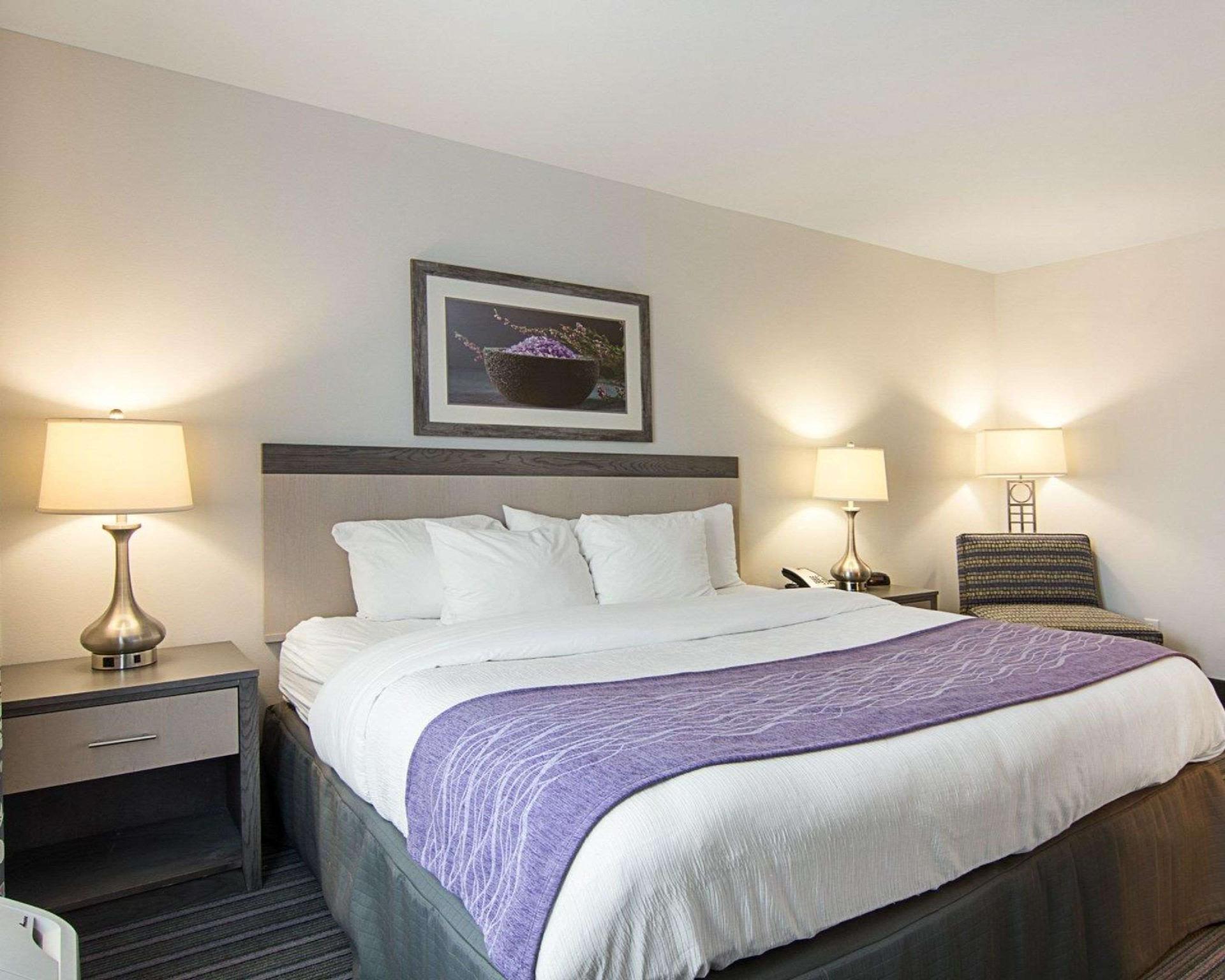 Comfort Inn Williamsburg Gateway In Williamsburg Va Room