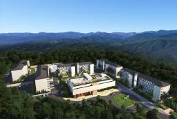 The N Resort Hotel and Spa Yangyang The N Resort Hotel and Spa Yangyang
