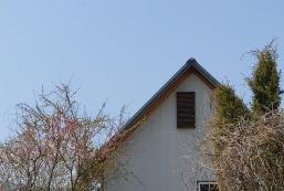 15平方米1臥室獨立屋 (院東面) - 有1間私人浴室 secret garden 2
