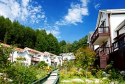 瑞士民宿 Swiss Pension