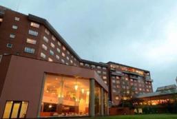 洞爺湖萬世閣湖畔露台酒店 Toyako Manseikaku Hotel Lakeside Terrace