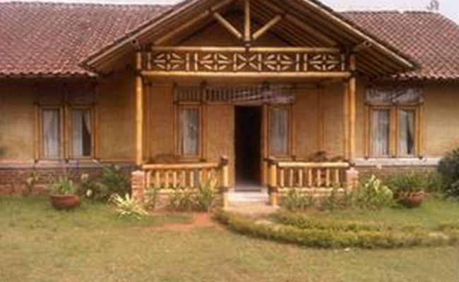 Taman Safari Where Wild Animals Roam Free West Java