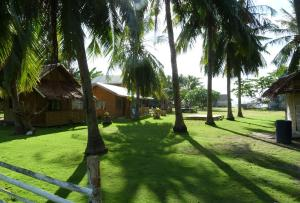 Junior and Nemesia Cottages