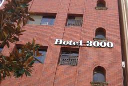 秋葉原酒店3000 Akihabara Hotel 3000