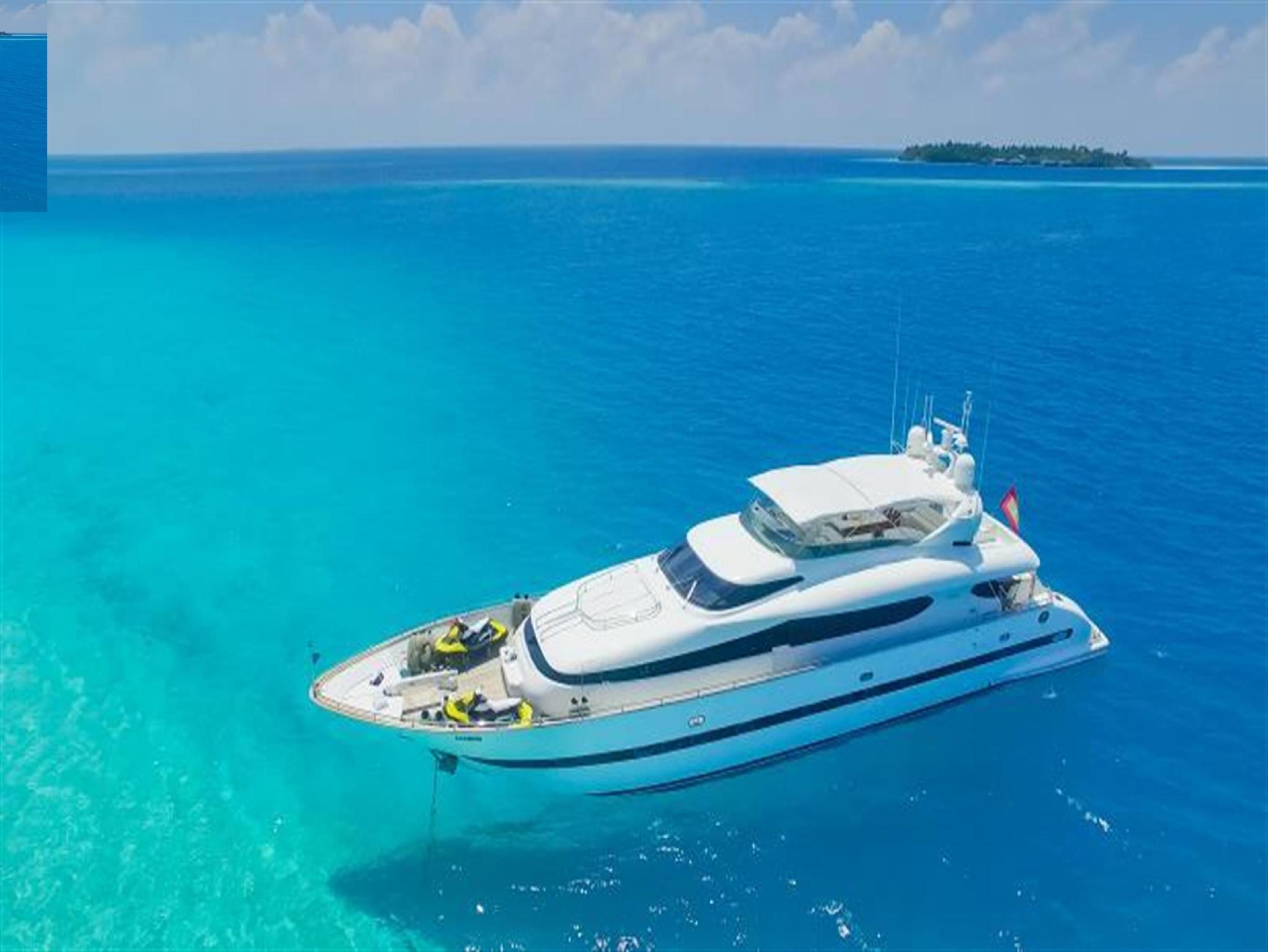 Sea Jaguar Maldives Islands Maldives
