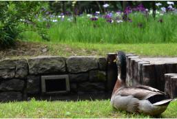 後樂花園酒店 - 後樂賓館 Koraku Garden Hotel