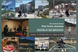 松林旌善高山度假村 Pine Forest Jeongseon Alpine Resort