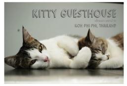 吉蒂民宿 Kitty Guesthouse
