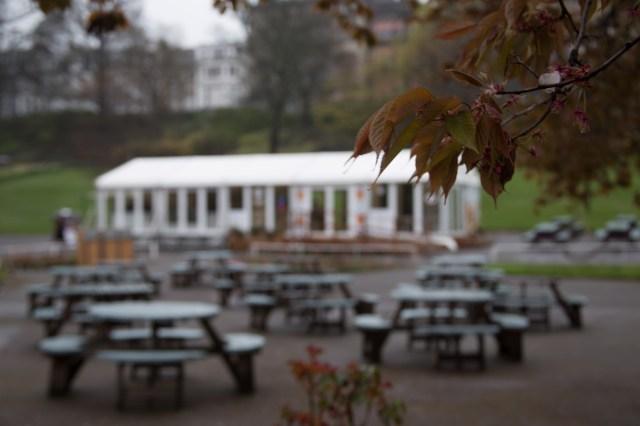 Empty park tables
