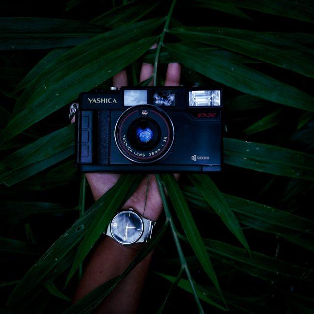 Camera on Palm