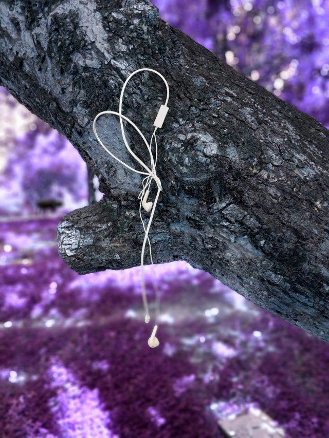 Ear phone on a tree