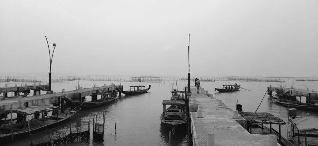 Fishermen's boats on Chilika lake.