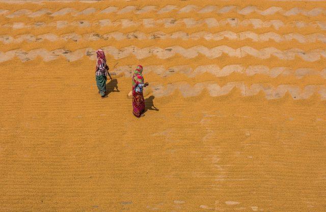 Rice processing
