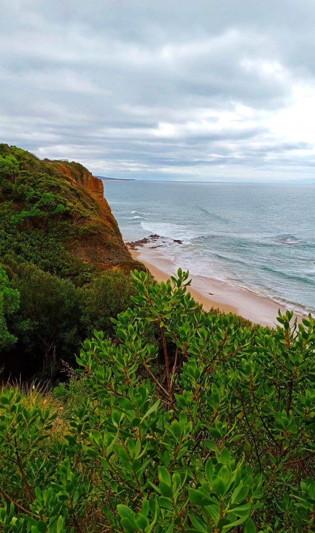 Sea Cliff Scenery