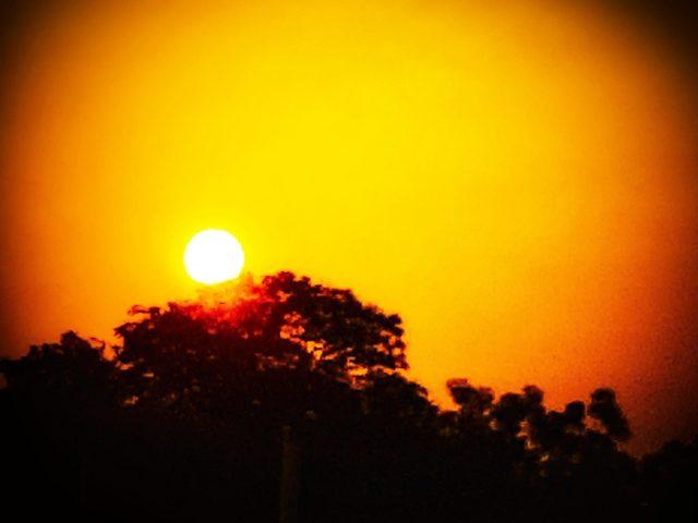 Orange sky during sunset