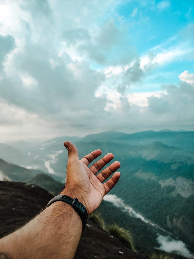 Hand towards nature