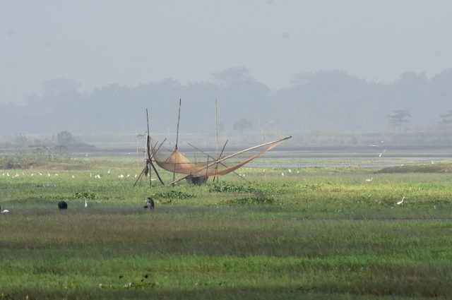 A fishing net in grass land