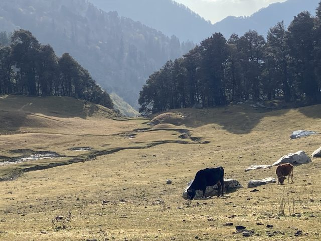 Bashleo pass in Himachal