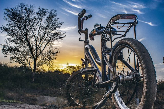 Bicycle in farm during sunset