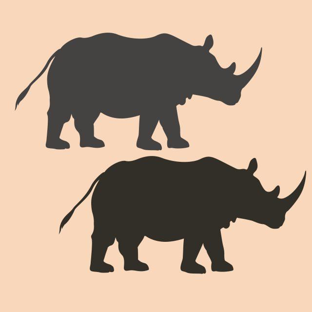 illustration rhino