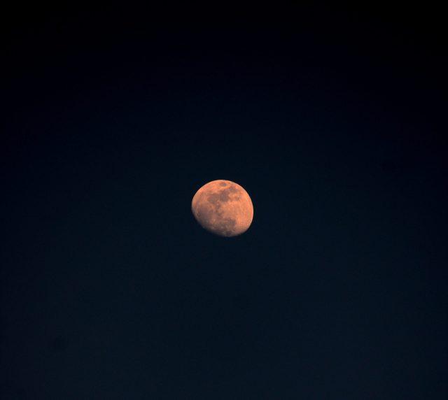 Moon during night