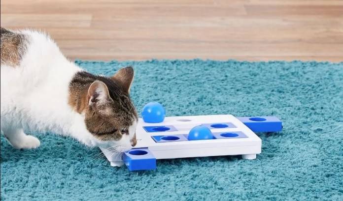 Trixie Brain Mover Interactive Cat Toy