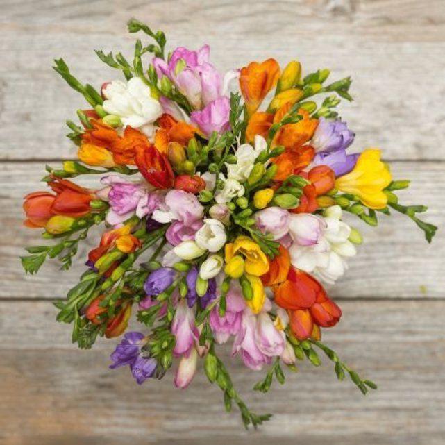 The Bouqs Co. Ace Flower Bouquet
