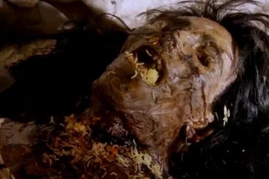 Image result for dead maggot bodies