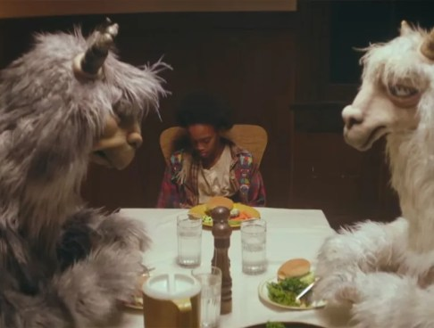 Image result for llama fall out boy