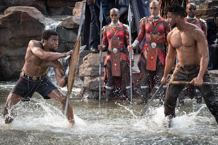 Image result for black panther ritual combat