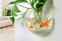 The Best Wall Decor Is a Fishless Fishbowl
