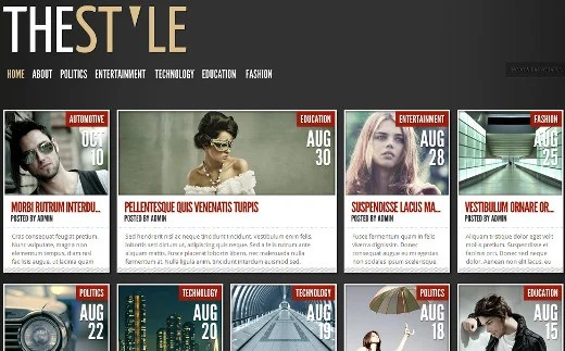 TheStyle Theme by Elegant Themes