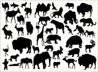 vectors-animals