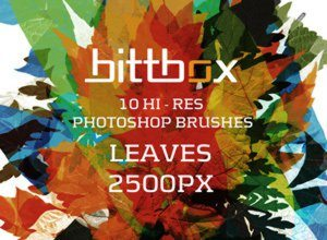 High-Res Leaves - Photoshop Brushes