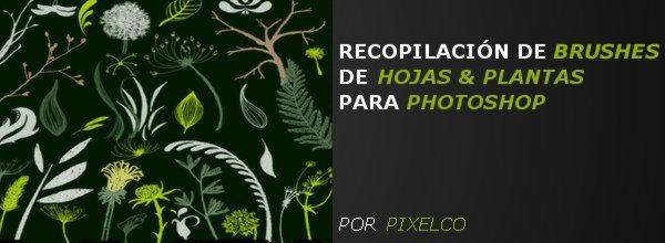 RECOPILACION DE BRUSHES DE HOJAS Y PLANTAS PARA PHOTOSHOP - POR PIXELCO