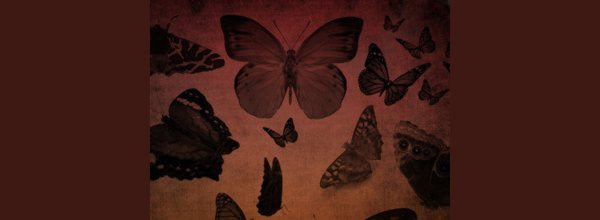 Butterfly-Brushes-Photoshop-free