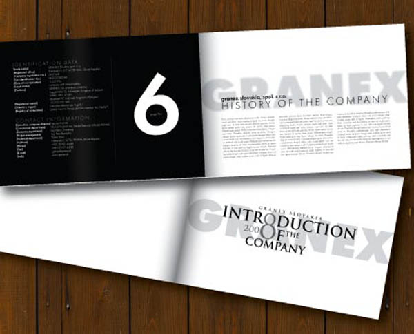 18 Minimalist Brochure Designs Pixel Curse