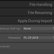 Add or Update Your Lightroom Copyright Year!