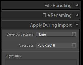 Apply during Import subpanel