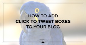 wordpress click to tweet boxes