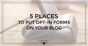 opt-in forms blog