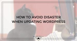 updating wordpress safely
