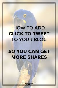 how to add click to tweet boxes in wordpress