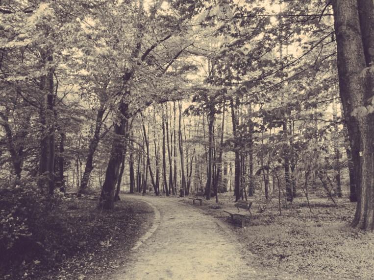 Etwas aus dem Kurpark in Bad Oeynhausen