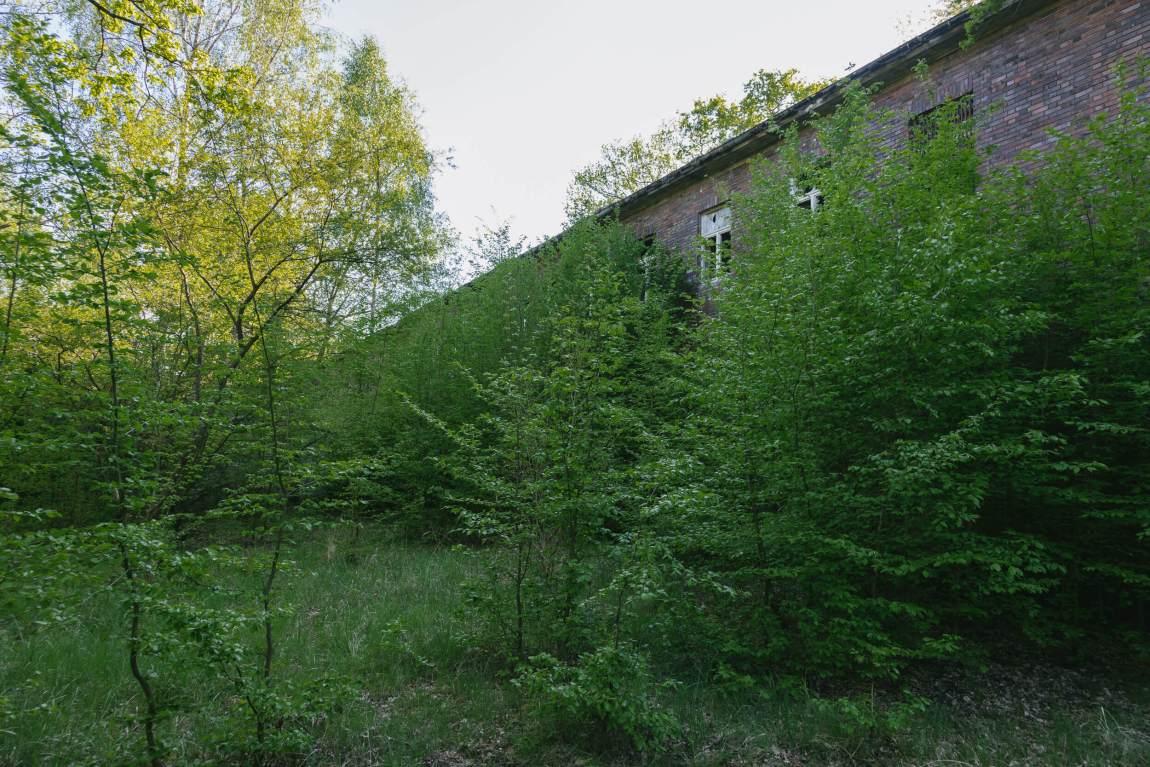 Flugplatz Schönwalde - Ein ehemaliger Militärflugplatz
