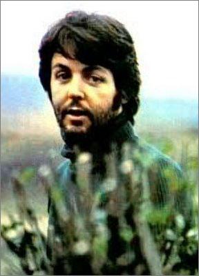 paul-beard-1