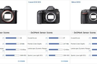 Sony A7R II vs. Nikon D810 vs Canon EOS 5DS: Significant improvement in DR at high ISOs