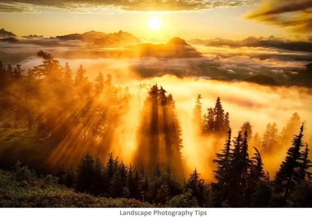 golden hour landscape tips