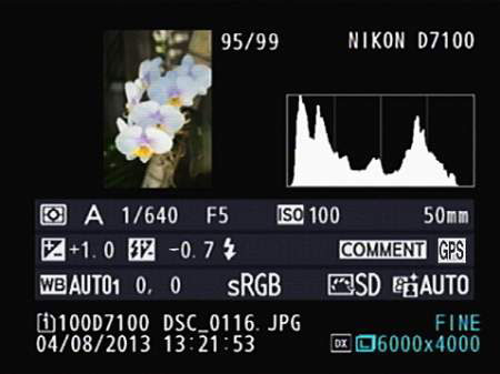 A typical histogram information on Nikon D7100